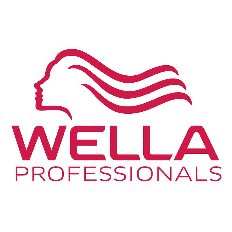 p1xel Webdesign - Kunden & Marken | Wella
